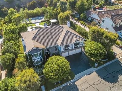 Anaheim, North Tustin, Orange, Santa Ana, Tustin, Villa Park Single Family Home For Sale: 10211 Overhill Drive