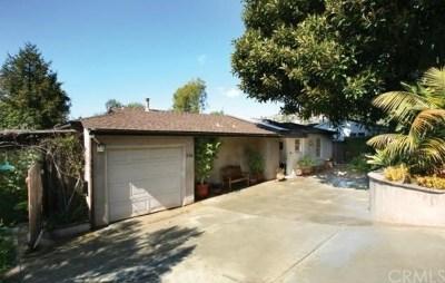 Laguna Beach Single Family Home For Sale: 736 Griffith Place