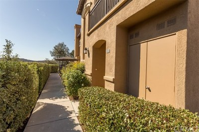 Aliso Viejo Condo/Townhouse For Sale: 25 Lucente Lane