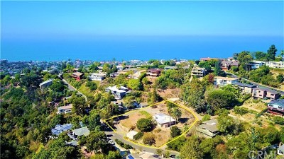 Laguna Beach Single Family Home For Sale: 1300 Dunning Drive