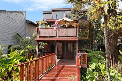Laguna Beach Single Family Home For Sale: 454 Flora Street