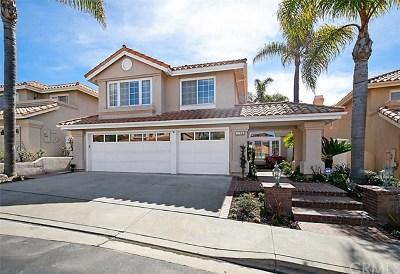 San Clemente Rental For Rent: 1206 Via Visalia