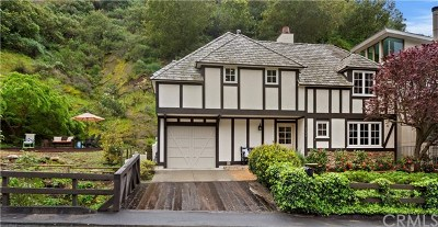 Laguna Beach Single Family Home For Sale: 507 Canyon Acres Drive