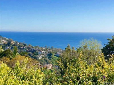 Laguna Beach Single Family Home For Sale: 1771 Palm Drive