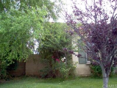 Redlands Single Family Home For Sale: 1652 Torino Street