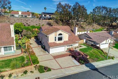 San Clemente Single Family Home For Sale: 2910 Obrajero