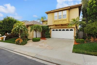 Coto De Caza Single Family Home For Sale: 23 Madison Lane