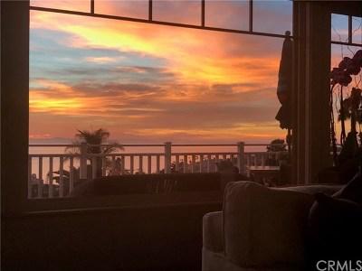 Laguna Beach Single Family Home For Sale: 1005 Skyline Drive