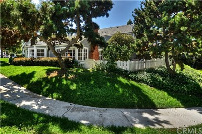Dana Point  Single Family Home For Sale: 33953 Cape Cove