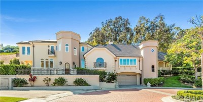 Dana Point Single Family Home For Sale: 2 Rogers Road