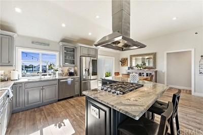 Dana Point  Single Family Home For Sale: 34081 Chula Vista Avenue