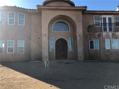 Phelan Single Family Home For Sale: 10592 Rochester Road