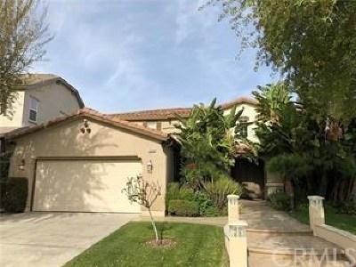 Valencia Single Family Home For Sale: 29349 Via Milagro