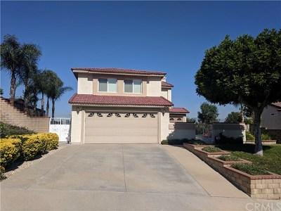 Diamond Bar Single Family Home For Sale: 24341 Darrin Drive