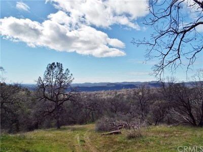 Mariposa County Residential Lots & Land For Sale: 3337 State Highway 49 S