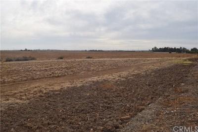 Merced Residential Lots & Land For Sale: Farmland