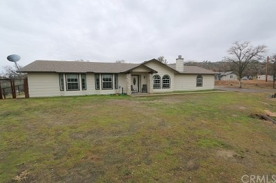 Coarsegold Single Family Home Active Under Contract: 30015 Stetson Drive