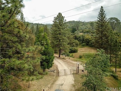 Mariposa Single Family Home For Sale: 5229 Chowchilla Mountain Rd