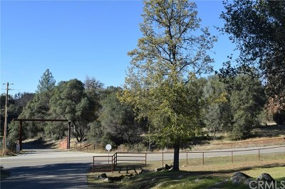 Mariposa Residential Lots & Land For Sale: 3974 Pacific Bars