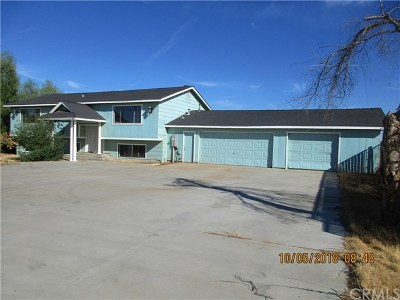 Madera Single Family Home For Sale: 17701 Road 24 1/2