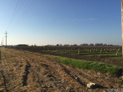 Merced CA Residential Lots & Land For Sale: $759,000