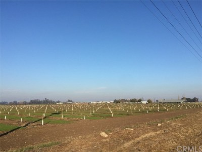 Merced CA Residential Lots & Land For Sale: $780,000