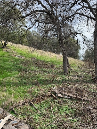 Mariposa Residential Lots & Land For Sale: 5225 Alta Vista Road