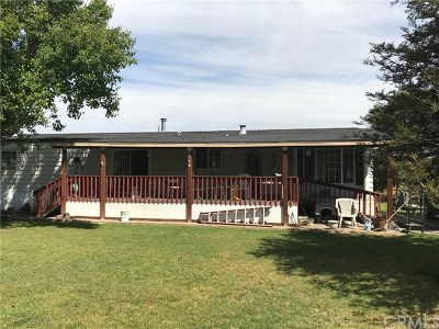 Merced Manufactured Home For Sale: 1740 Reilly Road
