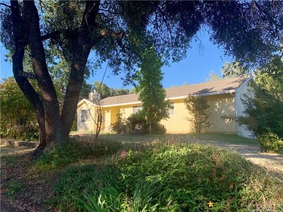 Mariposa Single Family Home For Sale: 3958 Snow Creek Road