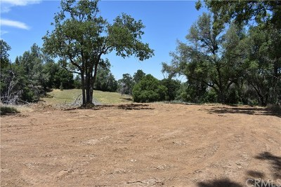 Mariposa County Residential Lots & Land For Sale: 80 Lookout Mountain Road