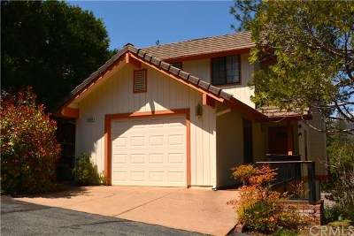 Bass Lake Single Family Home For Sale: 40584 Saddleback Road