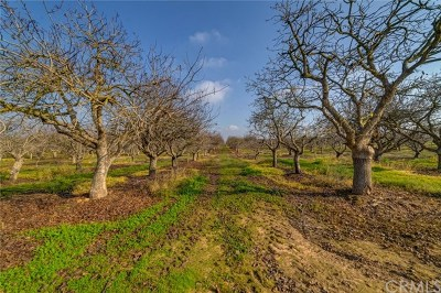 Madera Residential Lots & Land For Sale: Ave 19 1/2