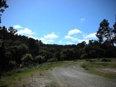 Monterey County, San Luis Obispo County Residential Lots & Land For Sale: 7745 Paseo Venado