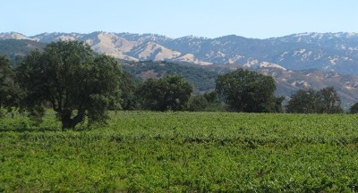 San Luis Obispo County, Monterey County, Santa Barbara Single Family Home For Sale: Cachagua Road
