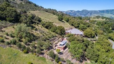 San Luis Obispo County, Monterey County, Santa Barbara Single Family Home For Sale: 250 Calle De Los Agrinemsors
