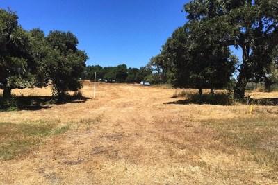 Monterey County, San Luis Obispo County Residential Lots & Land For Sale: 8375 Monterra Views (Lot 155)