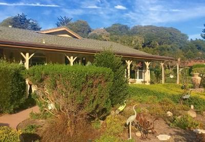 Monterey Single Family Home For Sale: 10121 Blue Larkspur Lane
