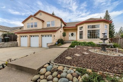 Folsom Single Family Home For Sale: 102 Stroup Lane