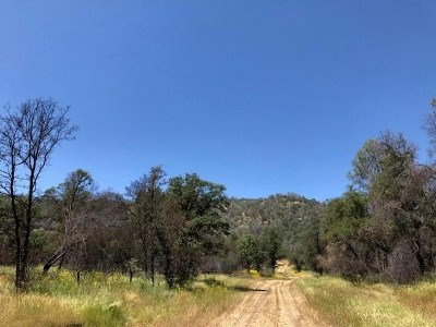 Mariposa Residential Lots & Land For Sale: Guadalupe Creek Road