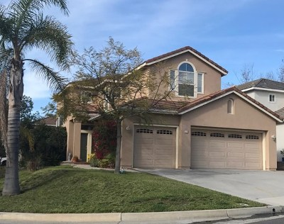 Trabuco Canyon Single Family Home For Sale: 12 Midlothian