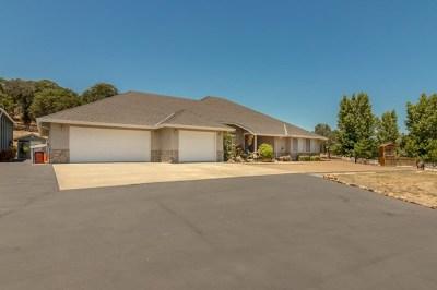 La Grange Single Family Home For Sale: 9479 Merced Falls Road