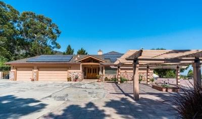 Salinas Single Family Home For Sale: 19615 Mesa Road