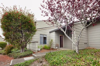 Pacific Grove Condo/Townhouse For Sale: 714 Timber Trail