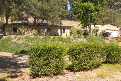 Monterey Single Family Home For Sale: 1243 Josselyn Canyon Road