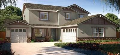 Brentwood Single Family Home For Sale: 731 Jennifer Street