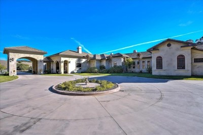Salinas Single Family Home For Sale: 8654 Carolines Ridge Road