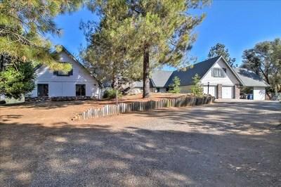 Oakhurst Single Family Home For Sale: 49695 Stillmeadow Lane