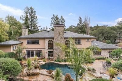 Hillsborough Single Family Home For Sale: 790 El Cerrito Avenue