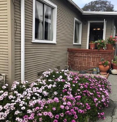 Monterey Single Family Home For Sale: 501 Dela Vina Avenue