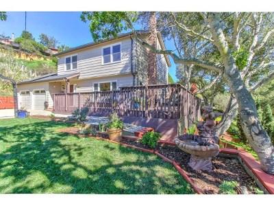 Salinas Single Family Home For Sale: 8651 Berta Canyon Court
